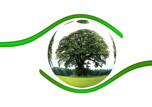 Ecologies, journée internationale de terre nourricière